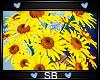 *SB* Bridesmaid Bouquet