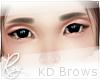 Brown Korean Brows