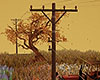 Telegraph Poles 60s