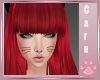 *C* Derivable Whiskers