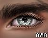 👀 Silver Eyes