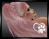 Bubblegum Peni