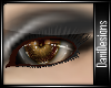 Earth Eyes V2