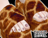Giraffe Fur Slides