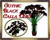 Gothic Calla Lilies