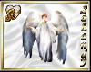 """S"" ANGEL BAUTIZO"