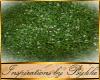 I~Castle Garden Moss