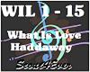 What Is Love-Haddaway