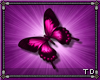 *T Pink Butterfly