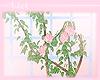 ::W: Rose Gate