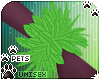 [Pets]Quin | wrist leafs