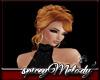 Taylor 6 Ginger Spice