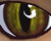 {DWW} Hazel Eyes M