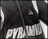 Pyramid WindBreaker 80s