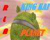 [RLA]King Kai's Planet
