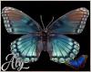 Blue Eden Butterflies