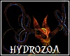 Hydrozoa Tendril horn