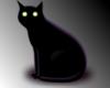 Cat *CDC*