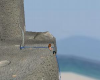 island w. climbing-rock