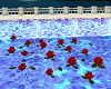 Floating Roses Red