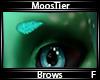 MoosTier Brows F
