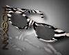 *R*Beach Sunglass Zebra