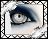 Y' +Gray Eyes+