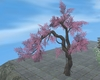 JAPANESE PINK TREE [FIRE