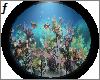 ' Pokemon Aquarium '