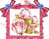 Boton de rosa...