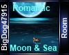 [BD] RomanticMoon&Sea