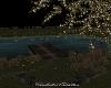 Spring Nights/DECO