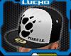 Pitbull Cap Black/White