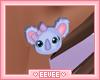 Kids Koala Earrings