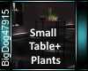 [BD]SmallTable+Plants