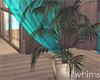 Romance Island Palm