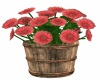 *M* Flower bucket