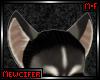 M! Husky Ears 2