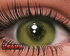 |A| Eyes Camuflagem