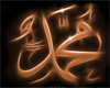 Muhammad is the Messenge