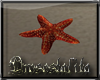 .:D:.Ocean Star Fish