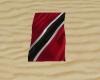 Trinidad B. Towal