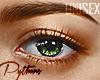 | Tropical Eyes