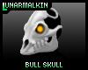 HornlessBullSkull