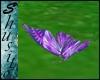""""""".Flying Butterfly.""""Lila"""