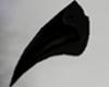 Black Beak