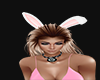 ears bunny