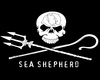 Sea Shepherd Curtains