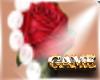 Pearls & Roses Tattoo
