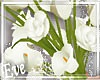 c My Bridal Bouquet